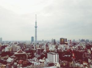Vista panoramica desde la habitacion