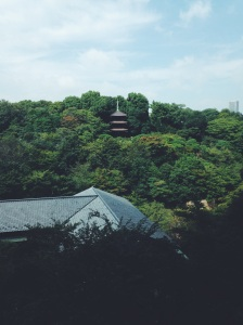 Jardin y pagoda