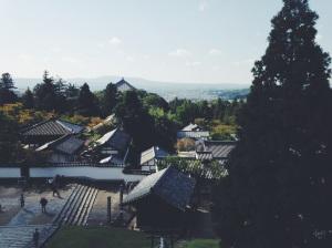 Nara desde lo alto de uno de los templos