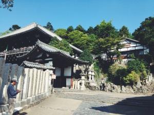Nara y sus templos